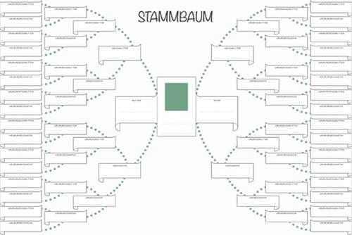Stammbaum Vorlage Kostenlos Als PDF Kribbelbunt