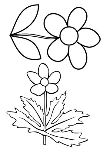 Blumen Basteln Vorlage : blumen vorlagen zum ausdrucken pdf kribbelbunt ~ Frokenaadalensverden.com Haus und Dekorationen