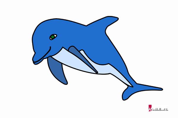 delfin vorlage  delfin malvorlage  kribbelbunt