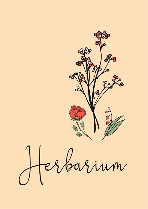 Herbarium Anlegen Anleitung Kostenlose Vorlage 15