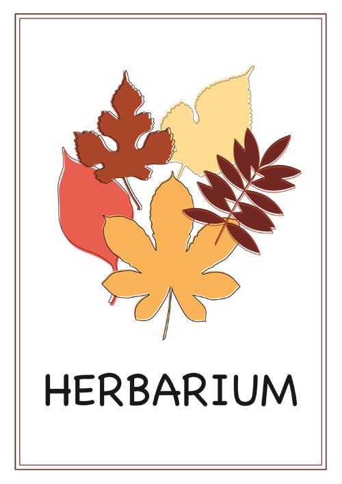 Deckblatt Schule Schule Dieses Herbarium 13