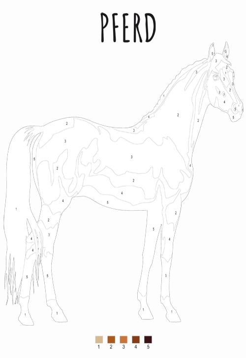 Malen Nach Zahlen Pferd Zum Ausdrucken Pdf Kribbelbunt