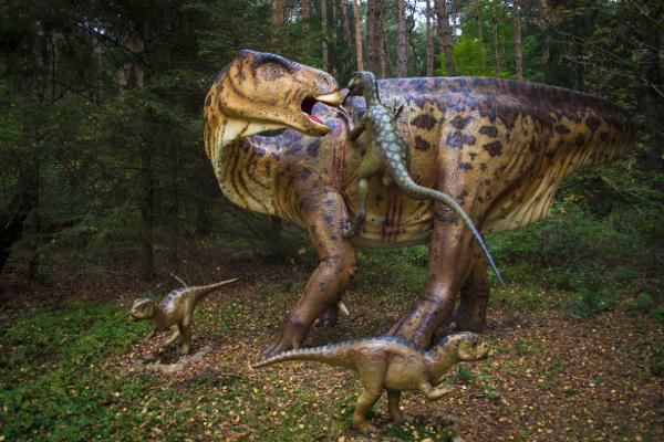 dinosaurierfreilichtmuseum münchehagen  kribbelbunt