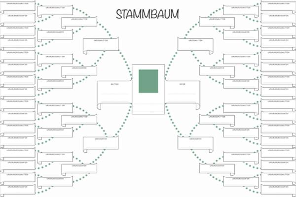 Stammbaum Vorlage » Kostenlos als PDF   Kribbelbunt